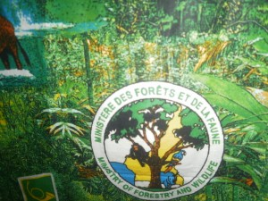 Ministry of Forestry & Wildlife - Cameroon's reforestation and regeneration are part of their national assignments